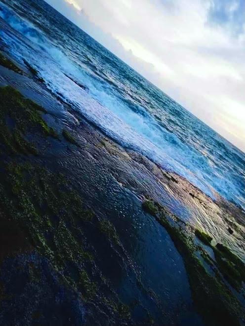 Negombo Beach Park