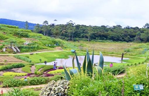 Moon Plains Agro Park