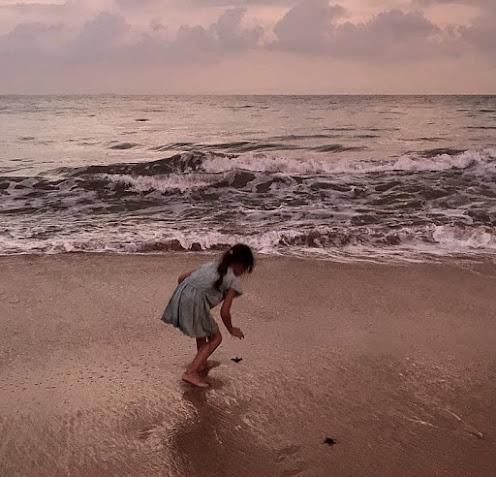 Kosgoda Sea Turtle Conservation Project