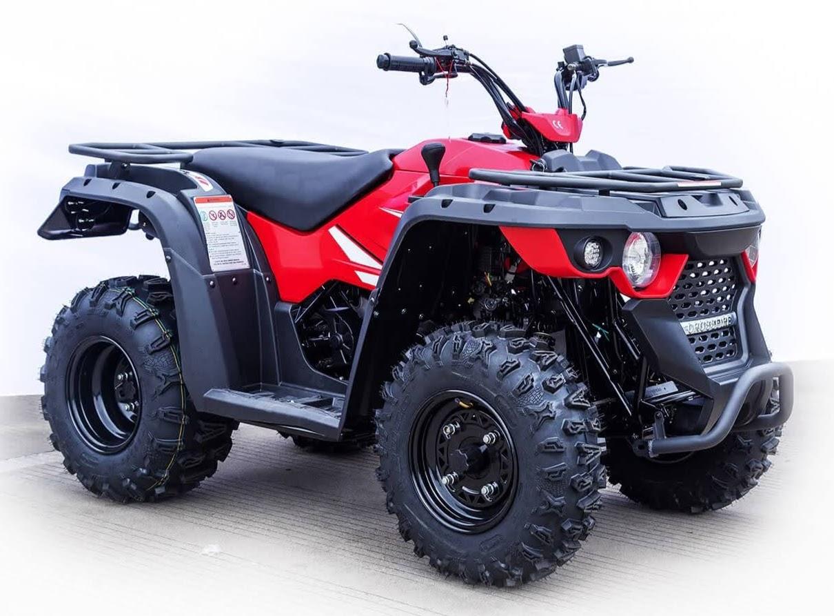 200cc 2WD X200 Auto ATV Farm 2x4 Linhai Quad Bike X2