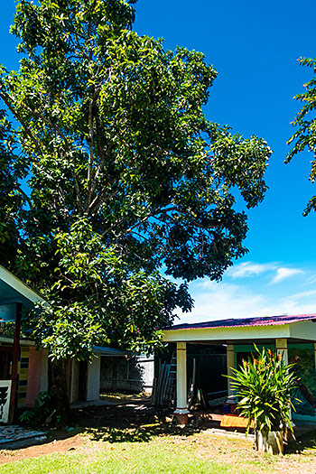 Yubarta Lodge, Uvita, Costa Rica