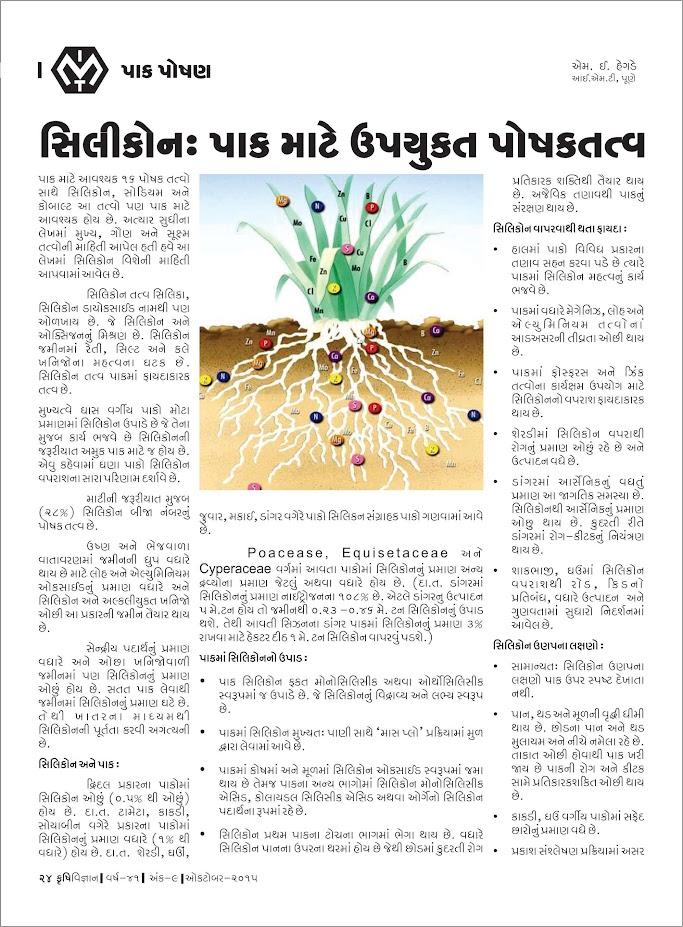 પાક પોષણ : સીલીકોન પાક માટે ઉપયુક્ત પોષકતત્વ