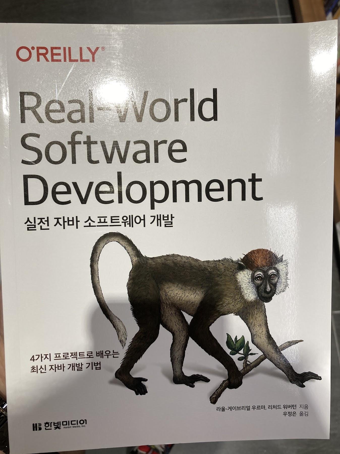 real_world_software_development-01