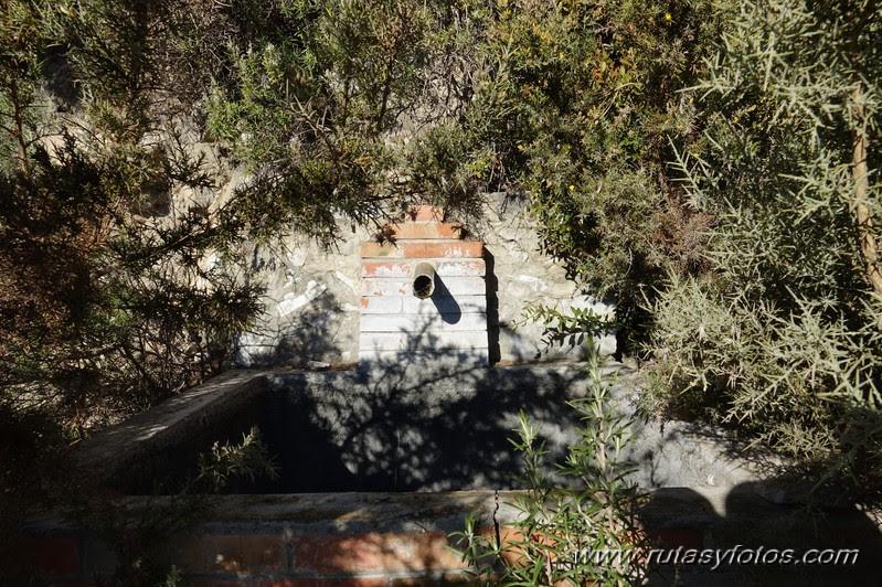 Subida al Cisne desde el Acebuchal