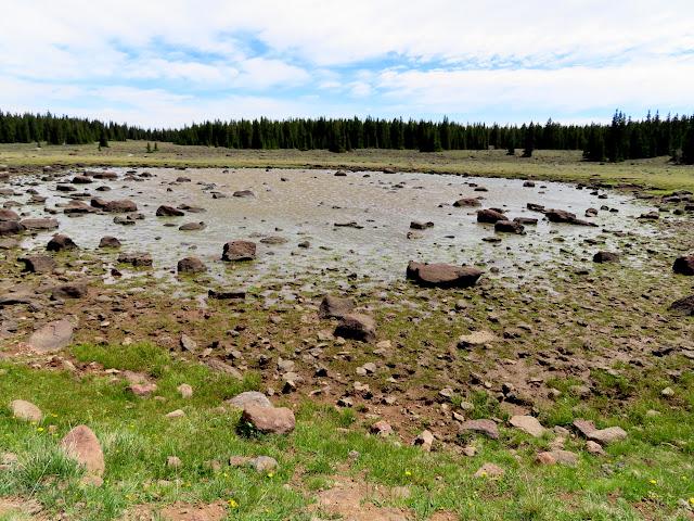 "The ""lake"" in Lake in the Flat Meadow"