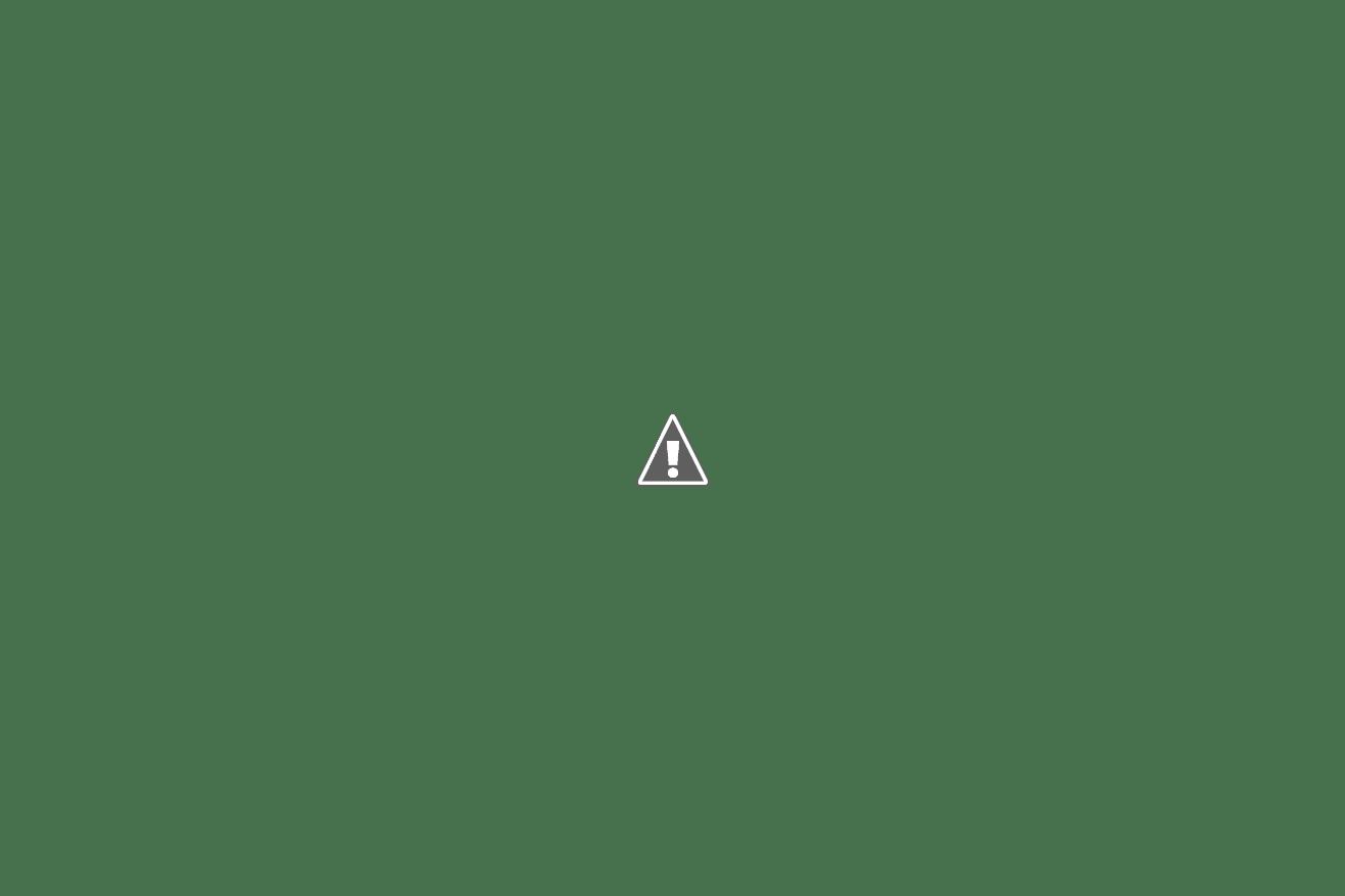 panitera baru dilantik