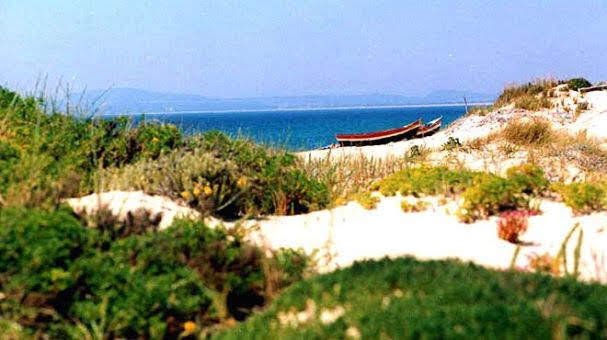 Praia do Carvalhal - Grândola