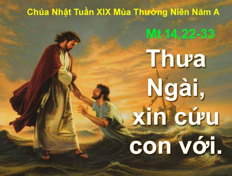 Nghe giảng Chúa nhật XIX thường niên năm A (2017)