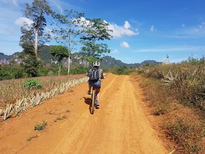 Half-Day 27 km Cycling Tour