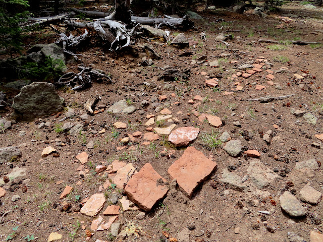 Sandstone on an old logging road