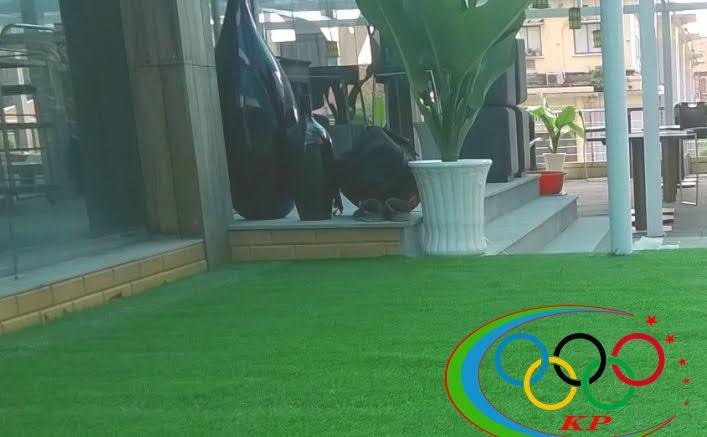 Lắp đặt các công trình Cỏ lá treo tường Thảm cỏ nhựa trên cao
