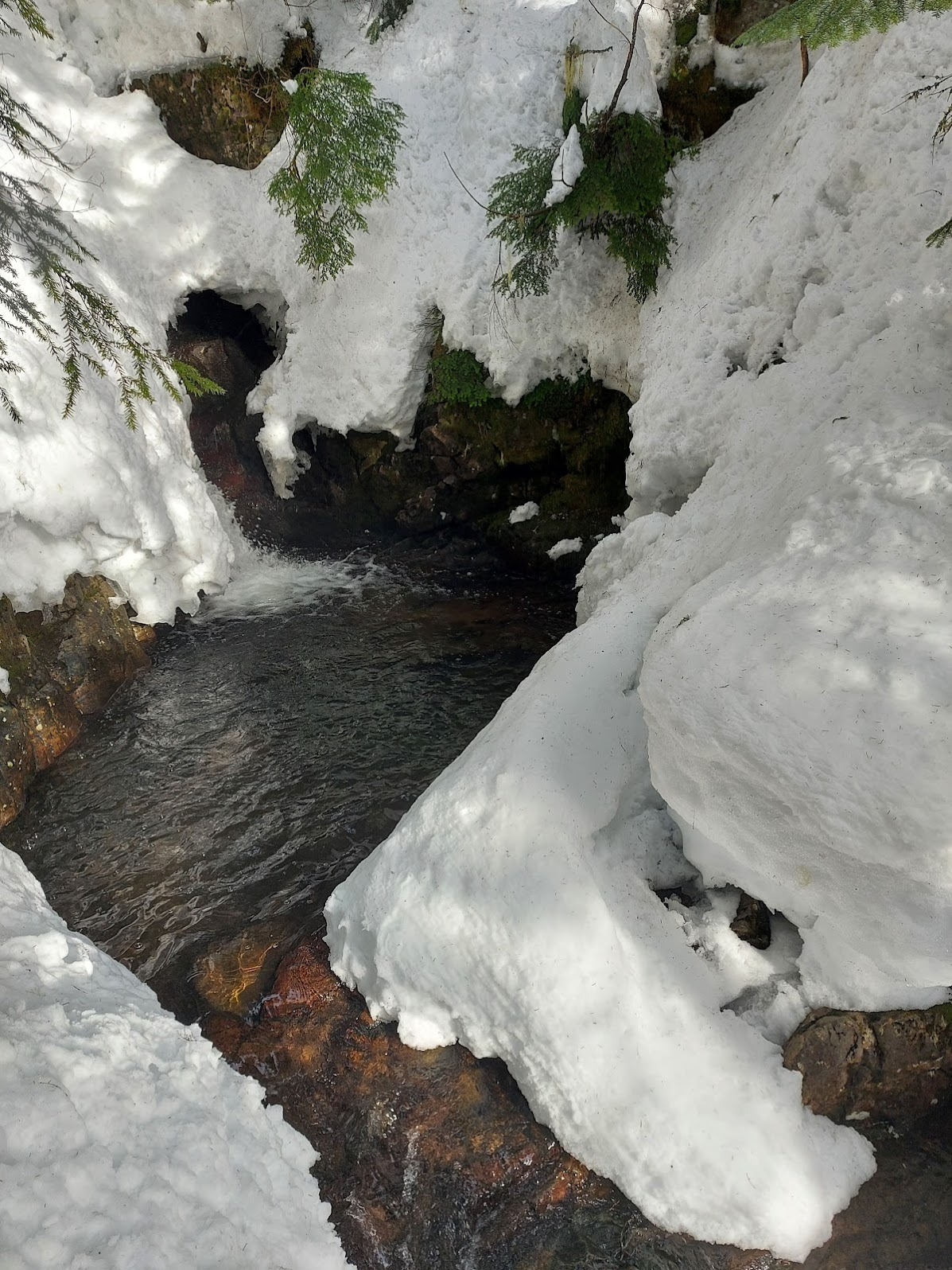 Bottom of the Creek
