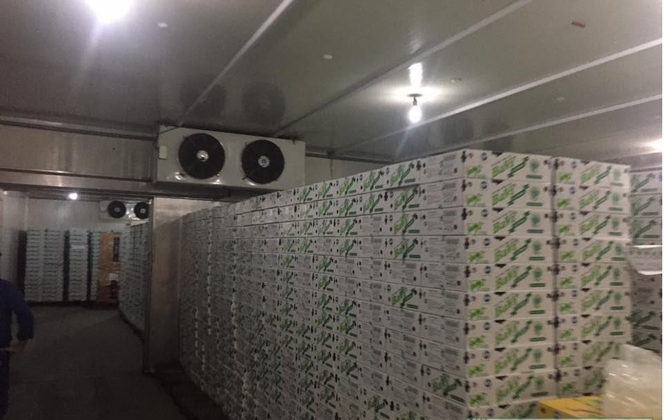 Hệ thống kho mát bảo quản sữa tươi