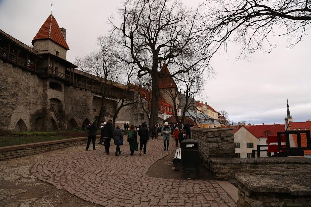 Новый год и Старый Таллин