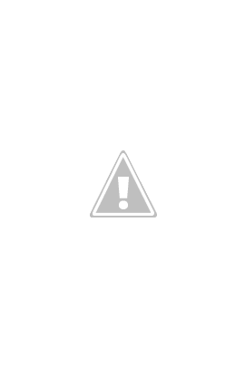 The Bear book image