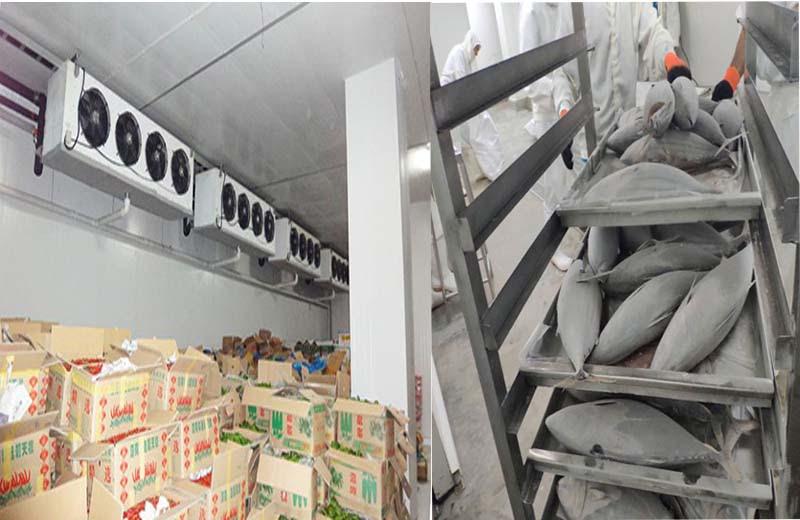 Kho lạnh được sử dụng trong bảo quản nông sản và thủy sản