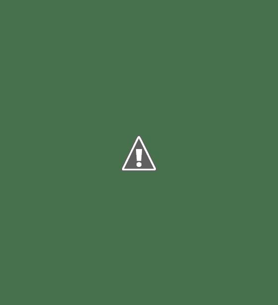 ROTARY INTERNATIONAL – 116 AÑOS DE SU FUNDACIÓN
