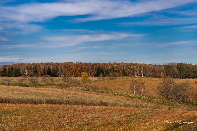 秋色に染まる風景