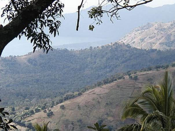Mt Ntingui