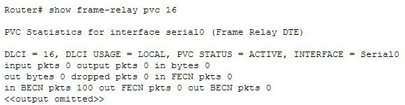 What is the significance of the following BECN packet statistics?