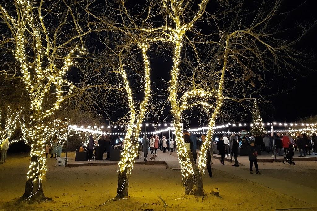 Рождественские каникулы-2021 в Краснодарском крае: Краснодар, Анапа, Абрау-Дюрсо, Новороссийск, Мысхако