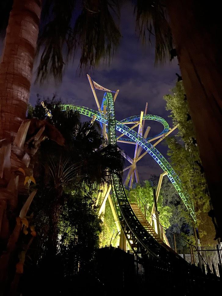 Cheetah Hunt/Busch Gardens Tampa - Photo by Desiree Domer