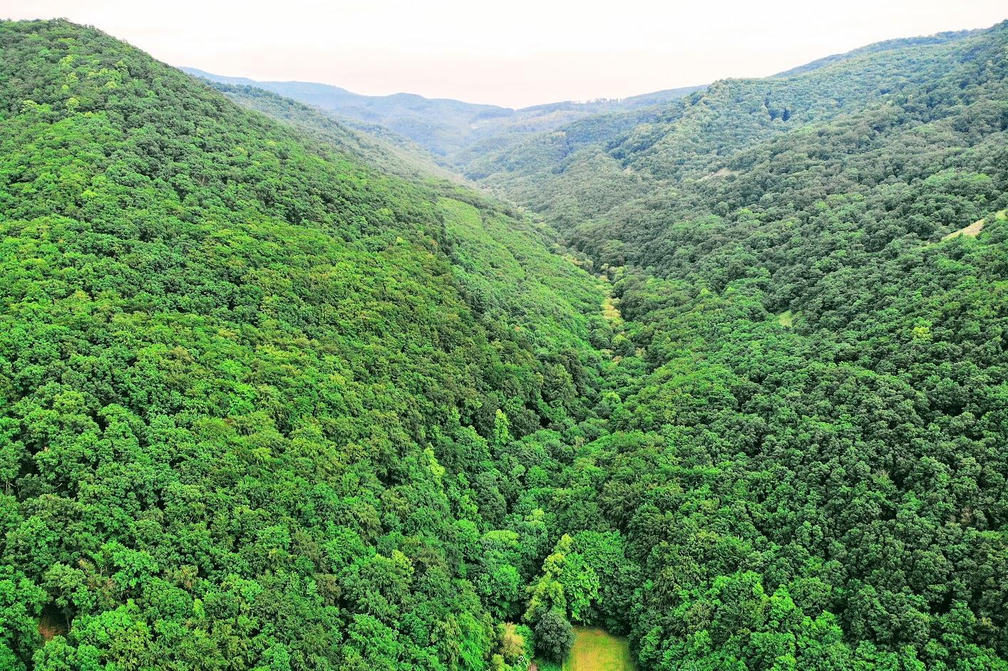 Csarna-völgy, Fekete-völgy, Szarvasbőgés, Holló-kő, Salgóvár, Vezetett túra