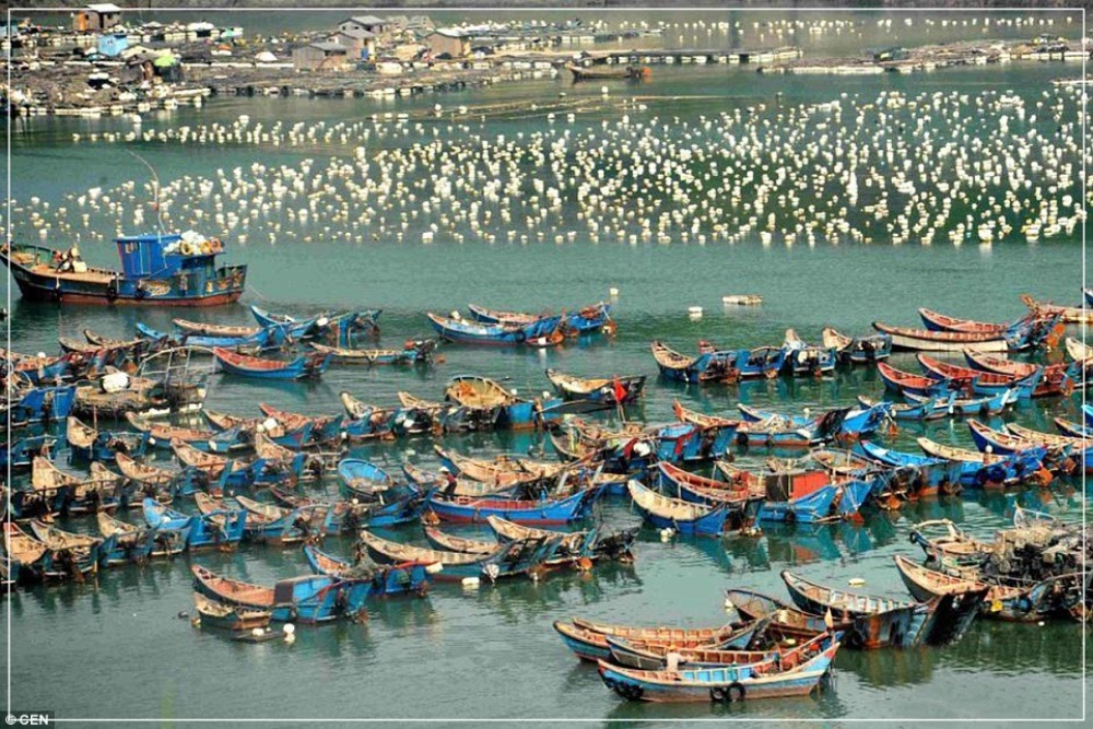 Sandu'ao, a maior comunidade flutuante do mundo