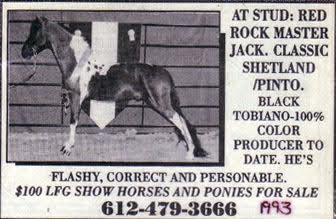 Red Rock Master Jack - AJs sire