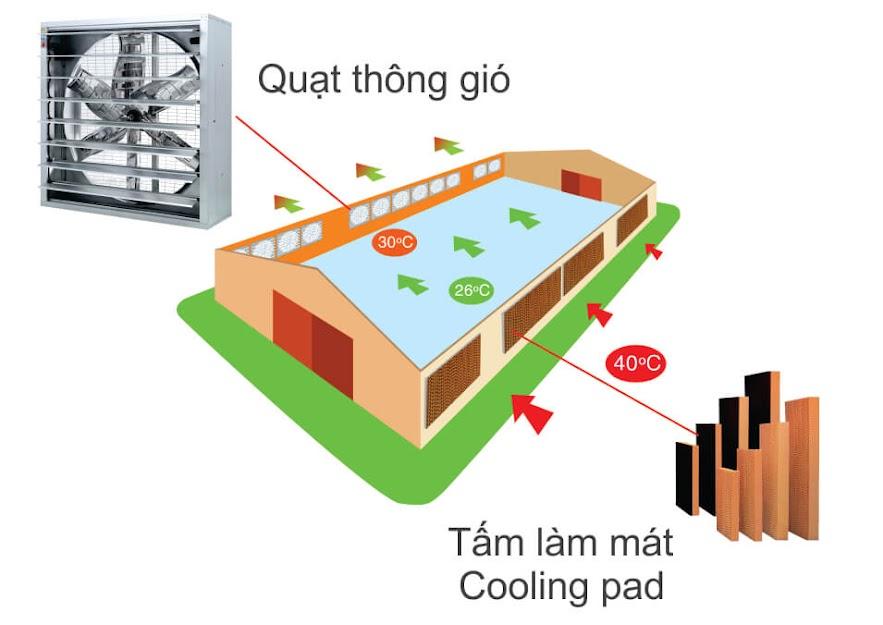 Hệ thống làm mát xưởng Cooling Pad