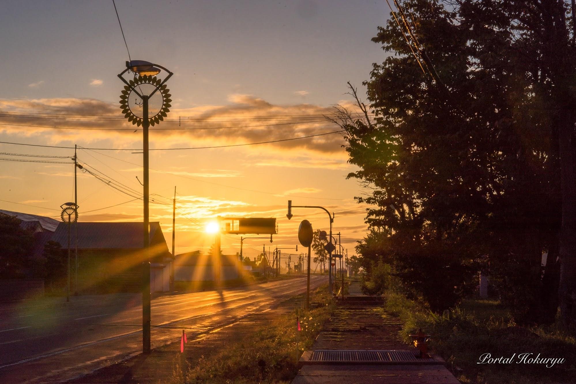 朝陽とひまわりの街灯