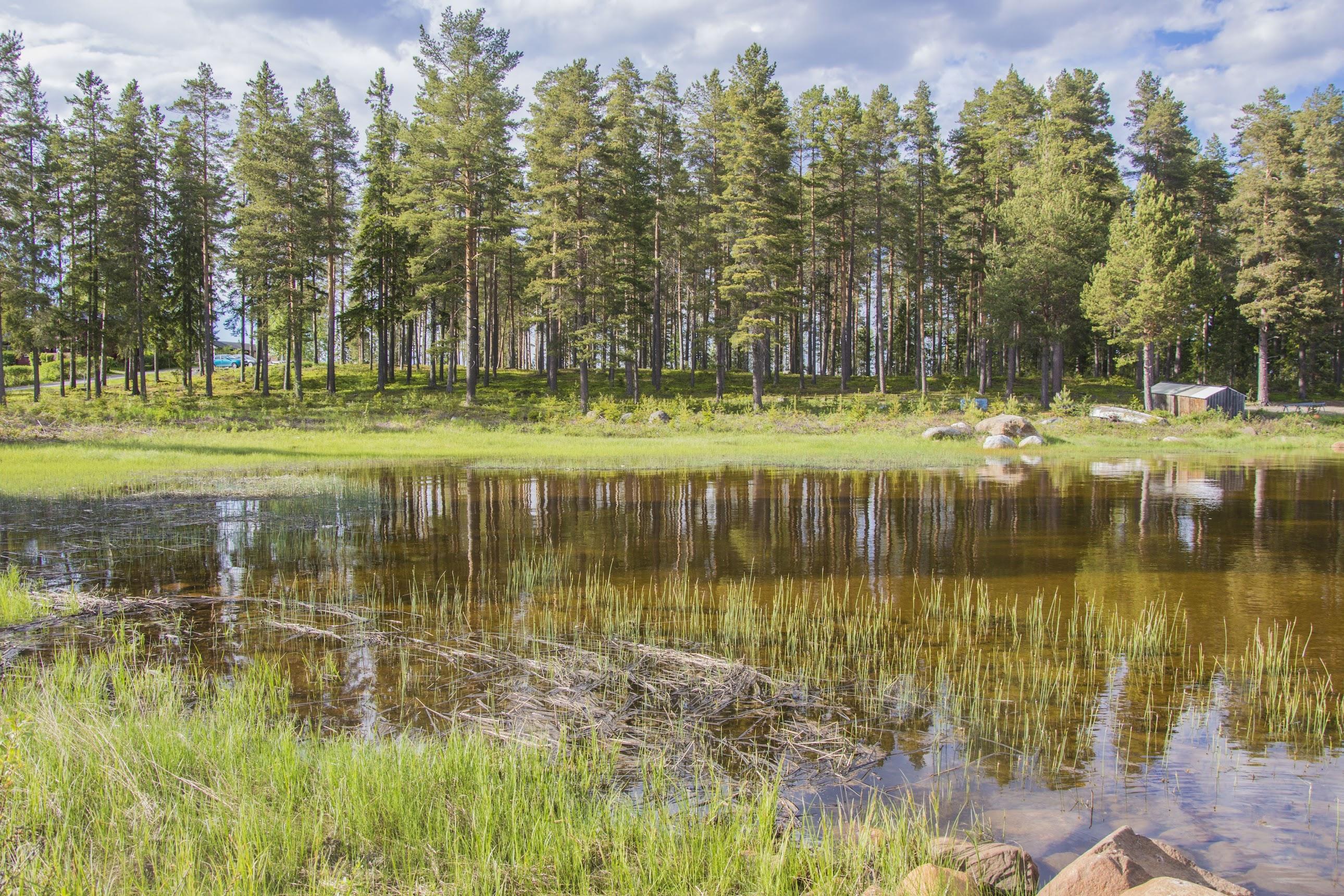 roadtrip-zweeds-lapland