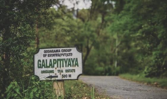 Galapitiyaya Waterfall
