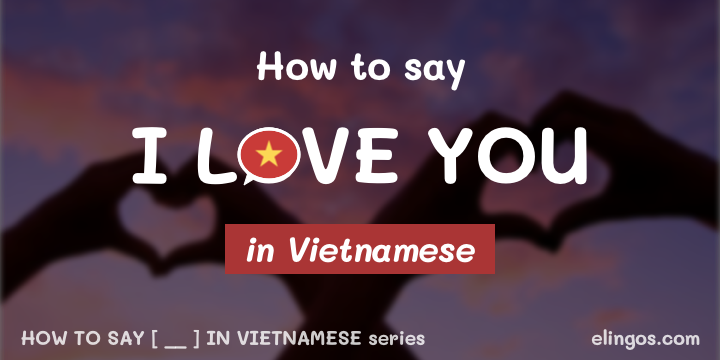 "How to say ""I love you"" in Vietnamese"