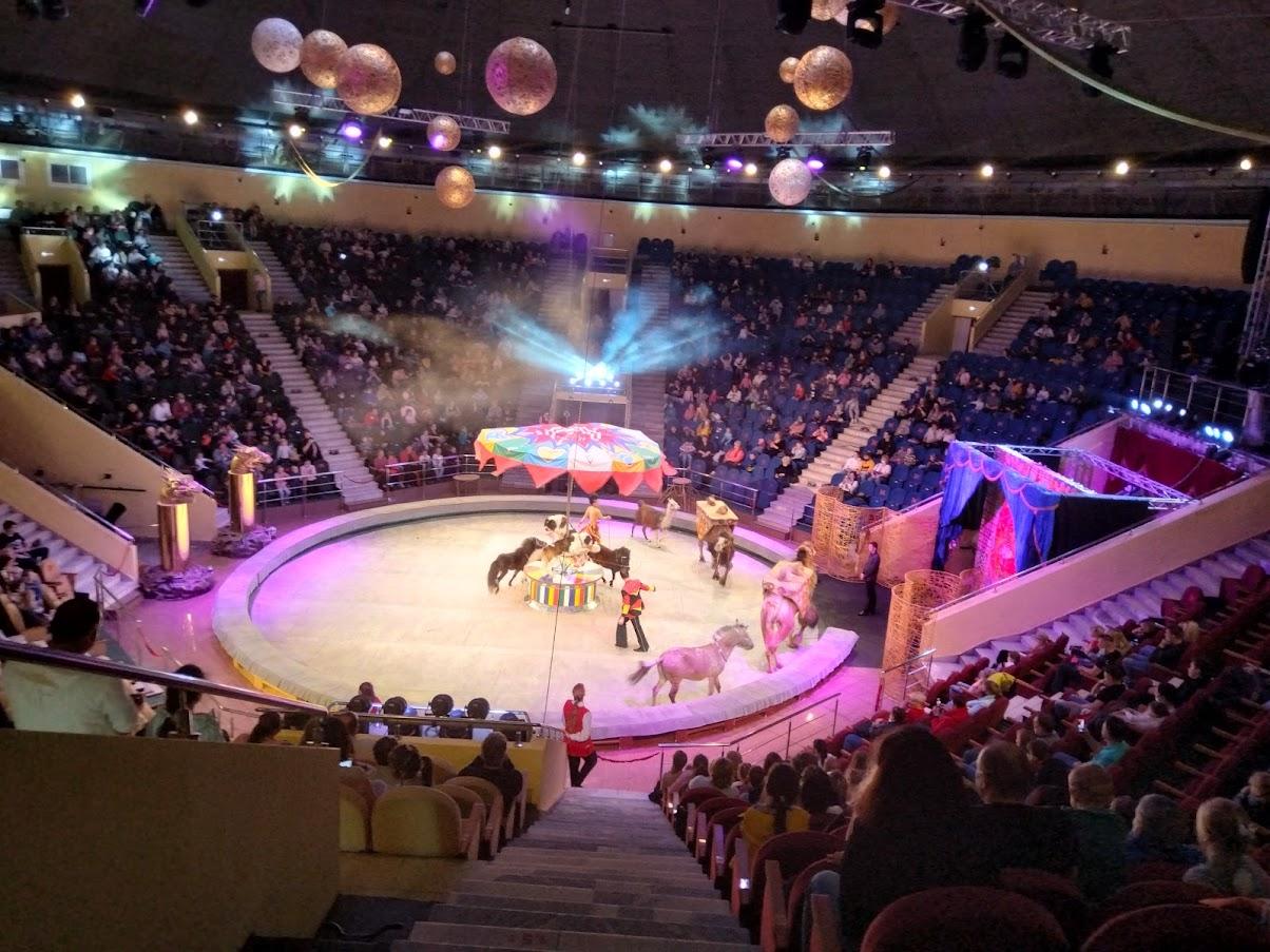Цирк!