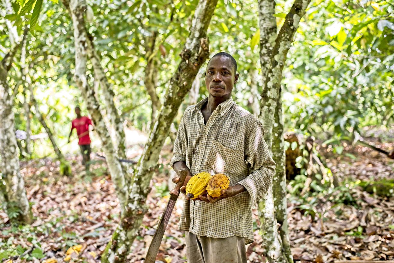 Pestovateľ kakaa (Pobrežie Slonoviny). Foto: (Fairtrade CZ, Stanislav Komínek.)