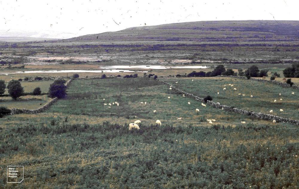 Turlough, os lagos que desaparecem da Irlanda