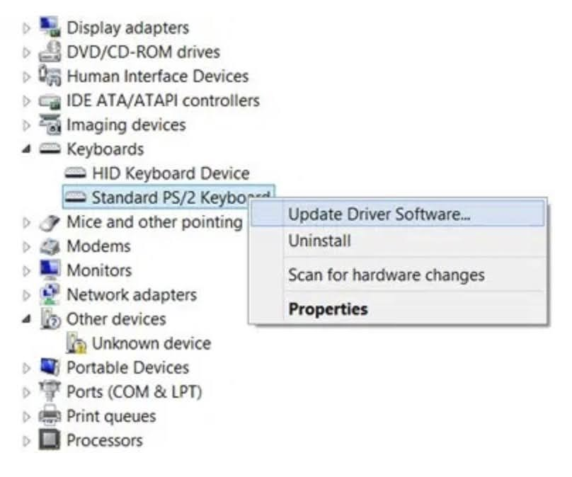 Right-click on it and choose the Update Driver Software option from the context menu.