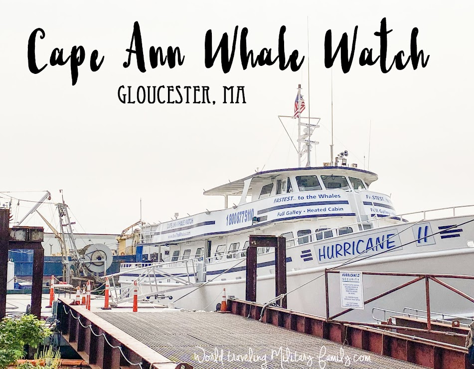 Cape Ann Whale Watch Gloucester MA