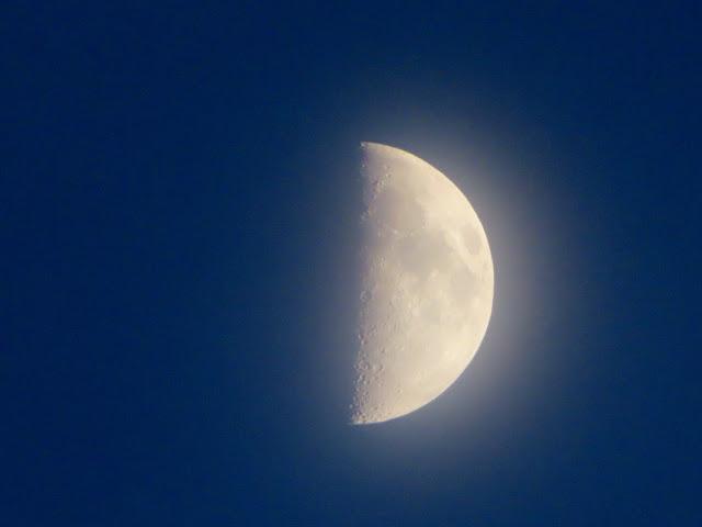 Half moon through the haze