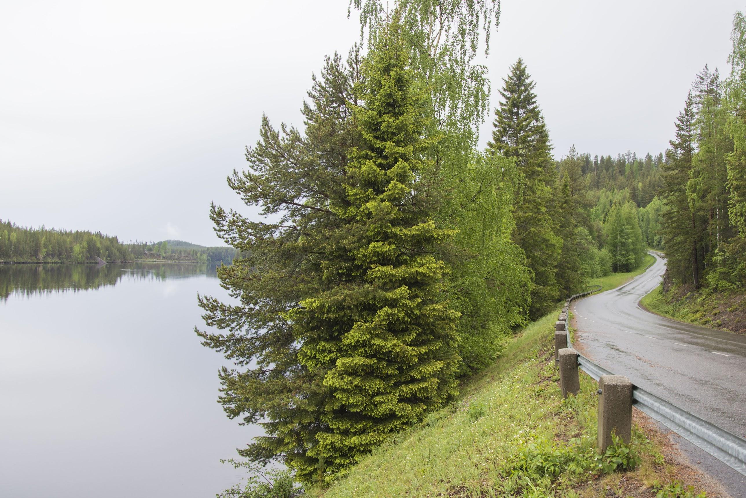 road-trip-zweeds-lapland