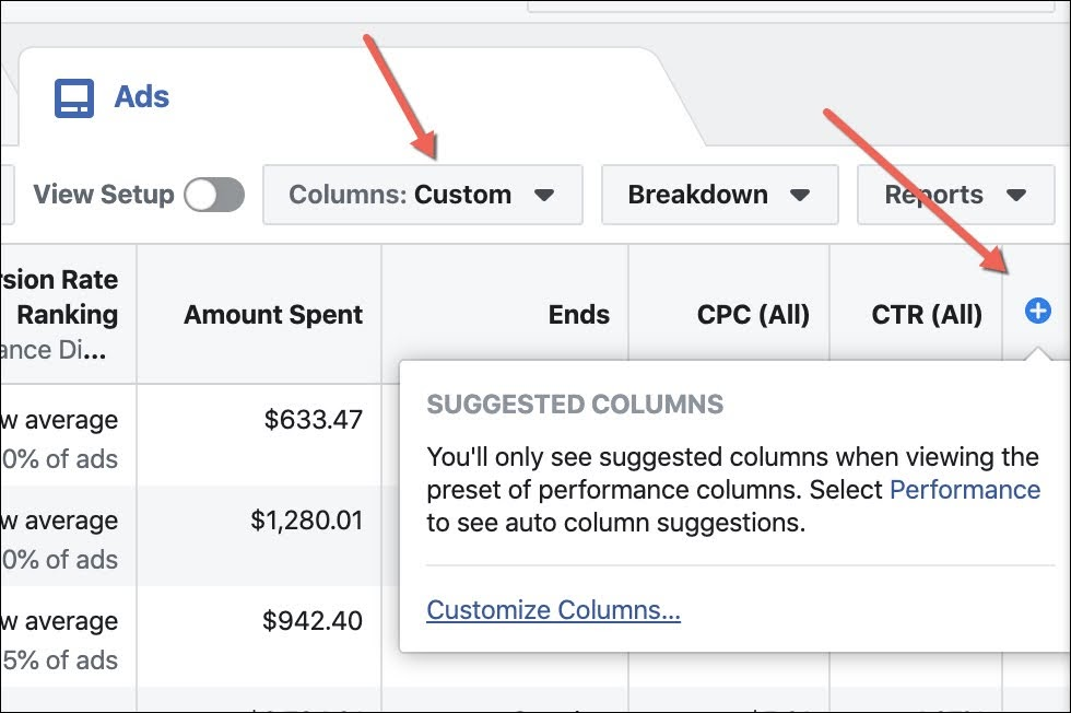 """Click on """"Columns"""" or the little blue and white cross to show more metrics in Ads Manager."""