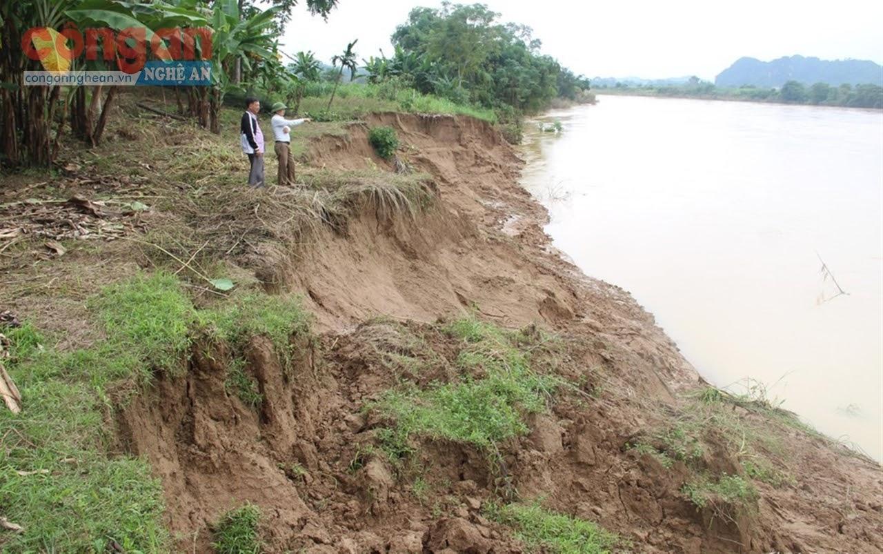 Sạt lở bờ sông tại huyện Anh Sơn - Ảnh: Thiện Thành