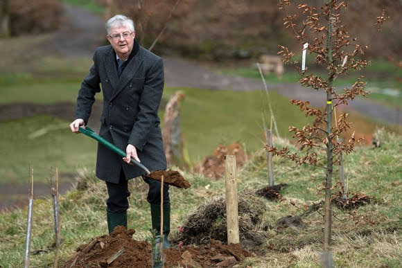 Pressure mounts for commemorative woodland