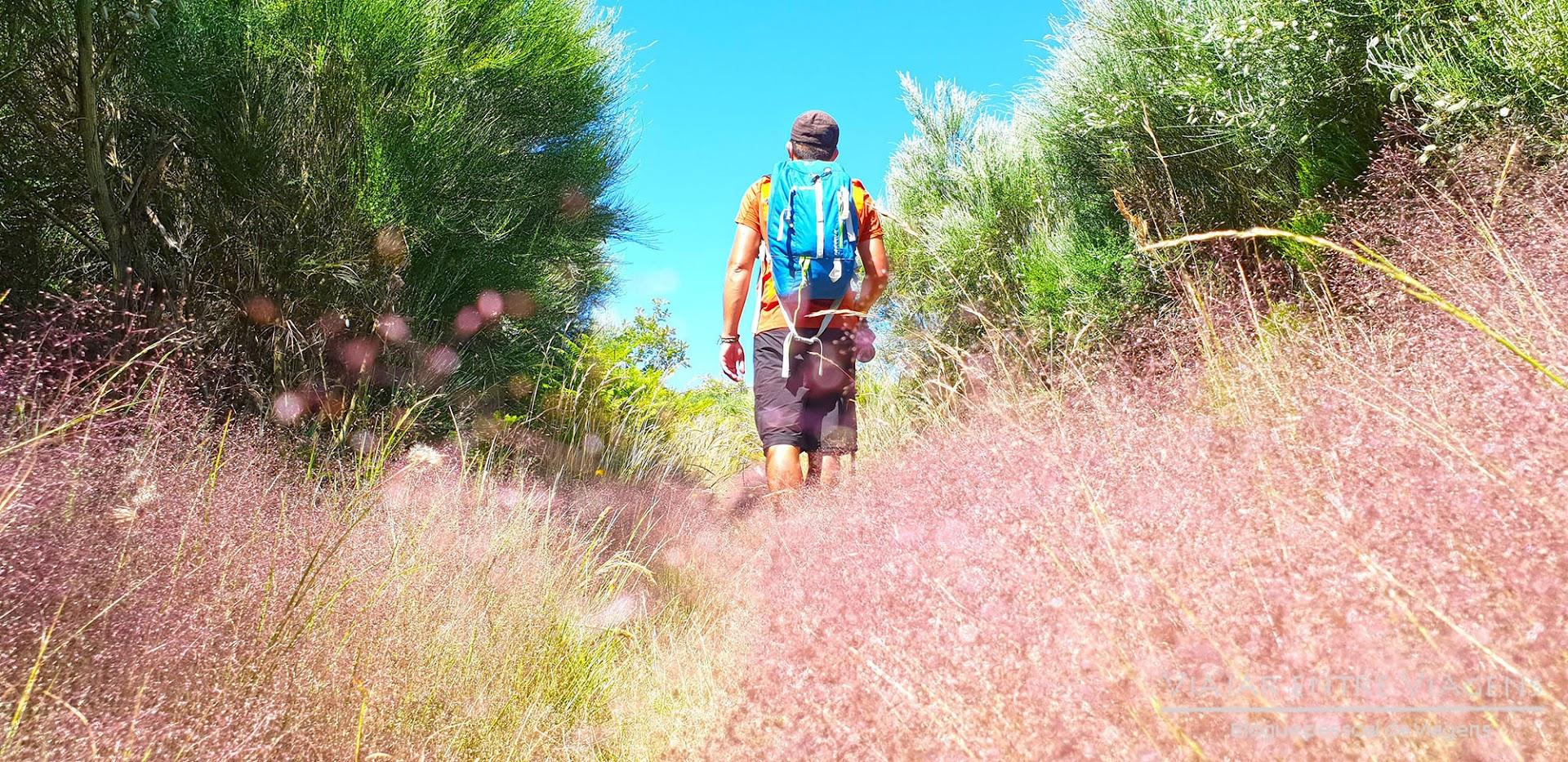 TRILHO DE PITÕES DAS JÚNIAS | 4 km de geologia, maravilhosas ruínas, cascatas e passadiços do Gerês