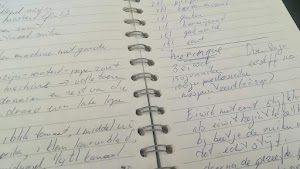 We made up or gathered recipes of typical Madeira stuff.