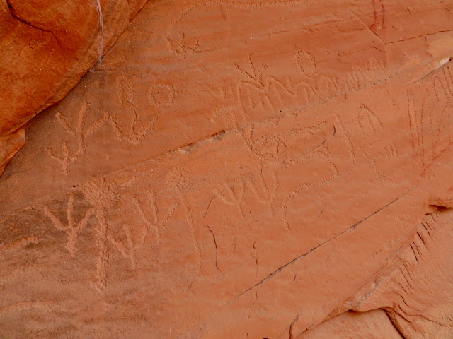 Many turkey track petroglyphs