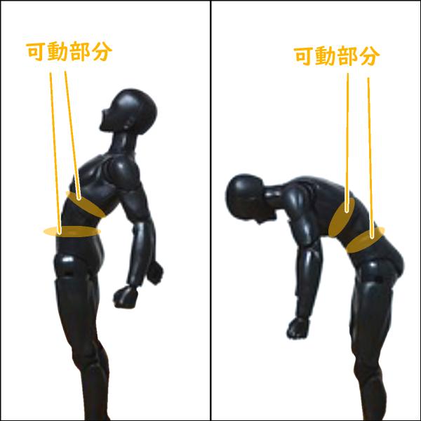 ボディくん:身体