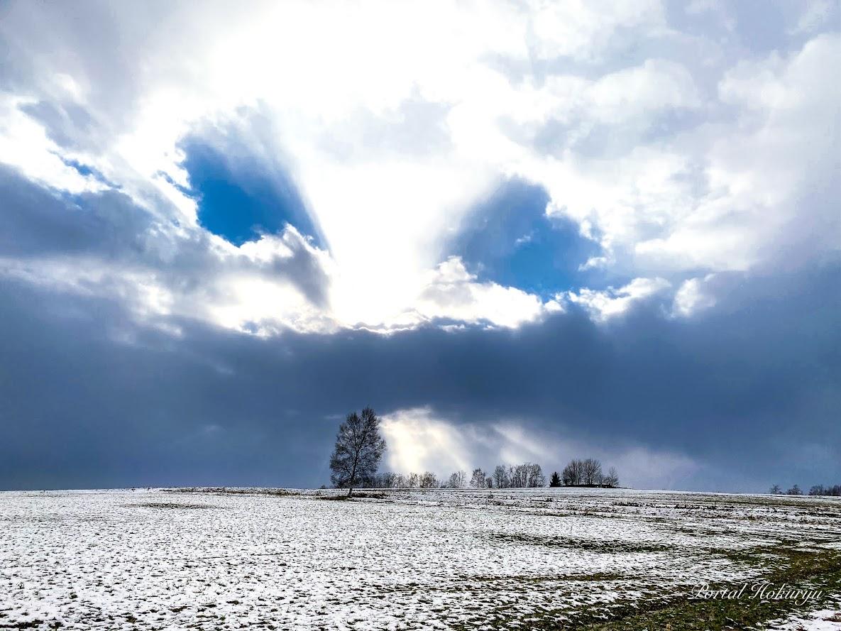 光と影が織り成す雲のアート