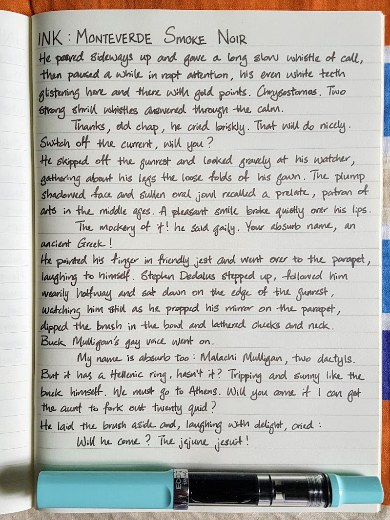 A page of writing and a fountain pen